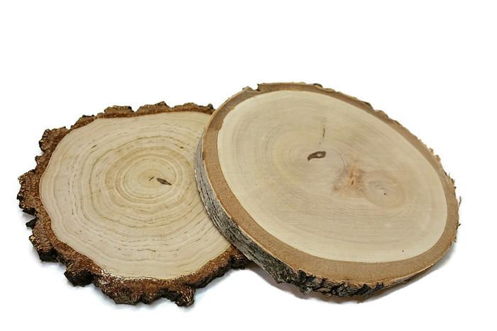 Plastry drewniane krążki drewna brzoza 20-25cm