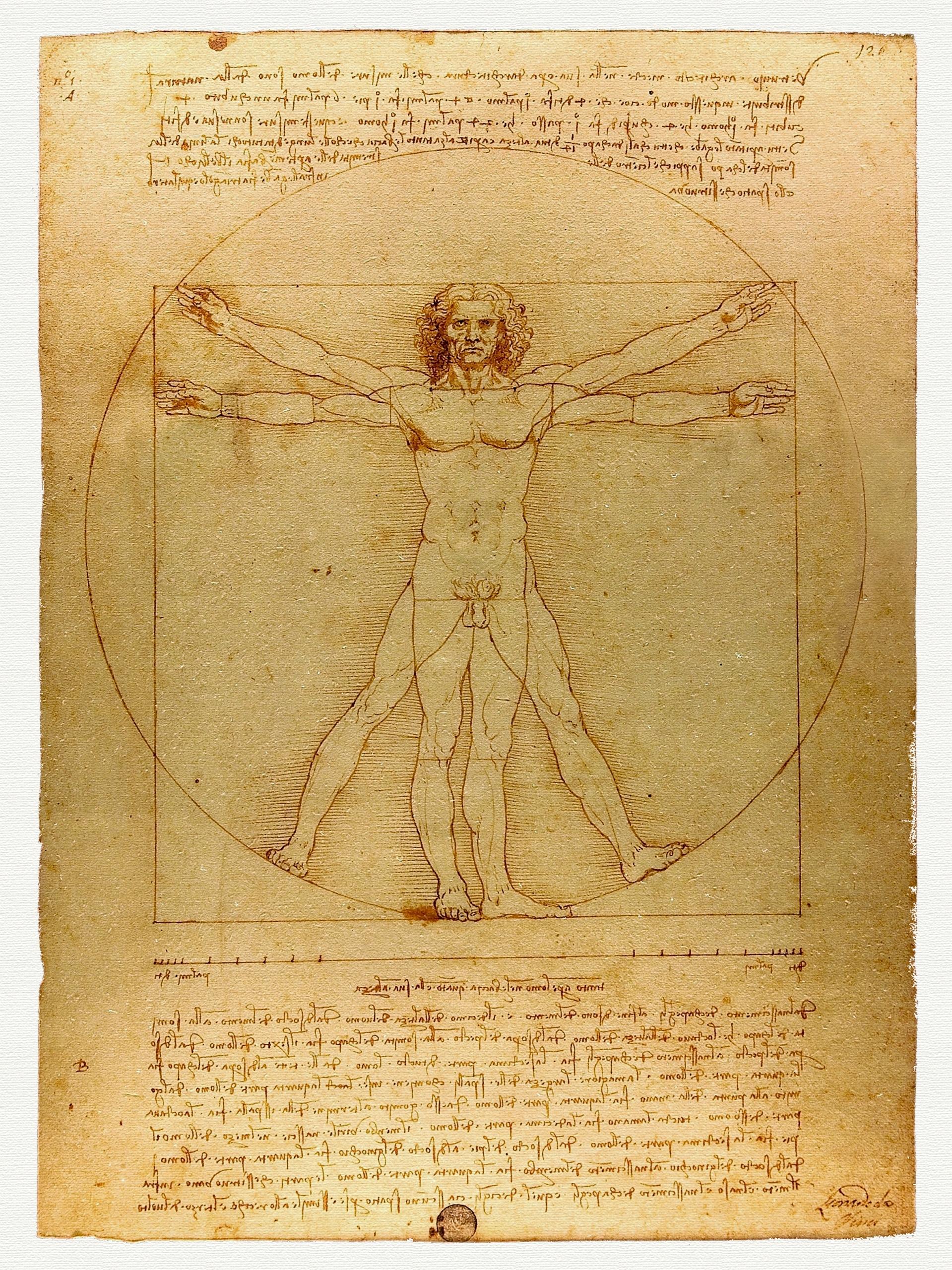 Item Vitruvian man Leonardo DA VINCI in 1490.