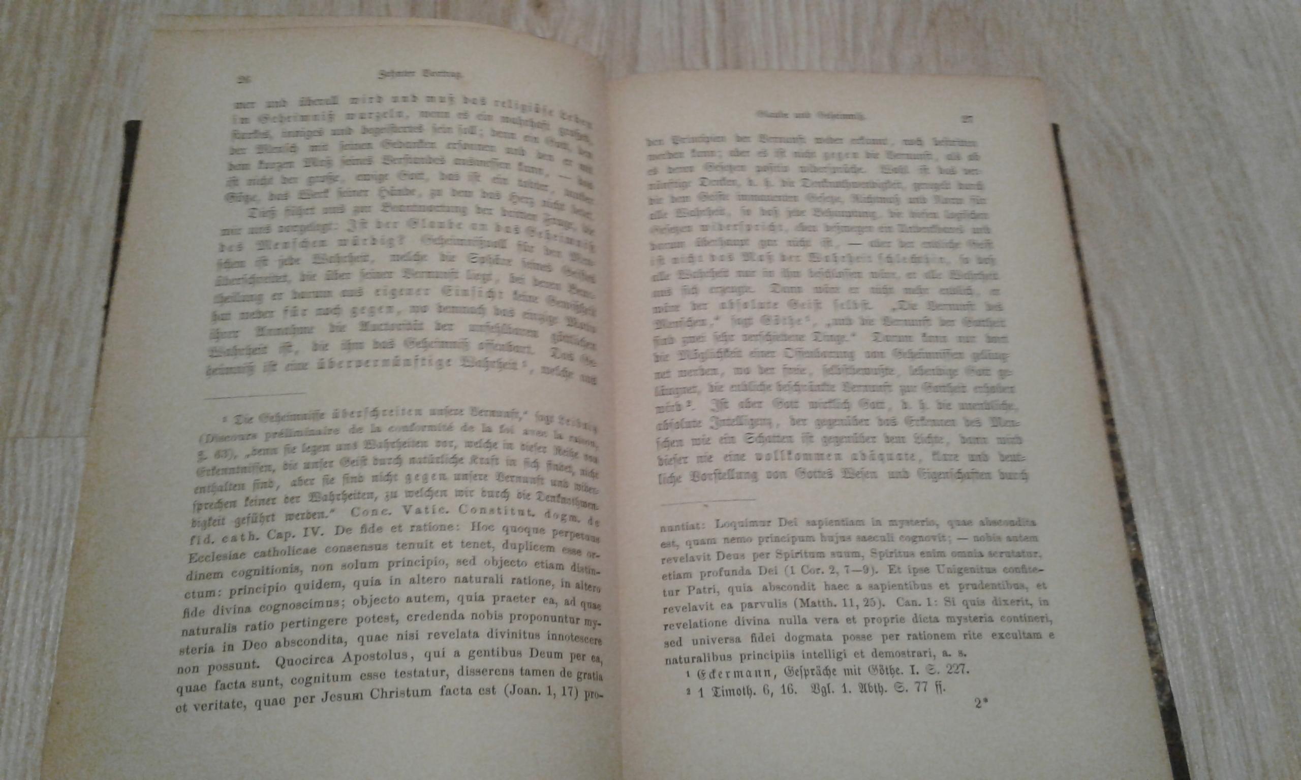 Apologie des christenthums 1875