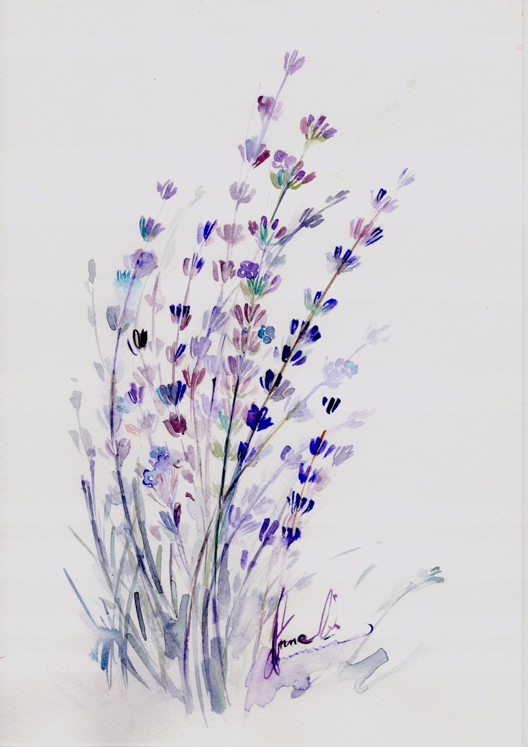 Akwarela Kwiaty Obraz Druk Maki Lawenda A4 7517298051