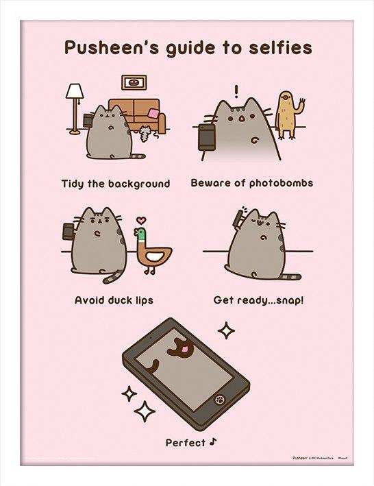 Plakat W Ramie Pusheen Guide To Selfies 7259595433