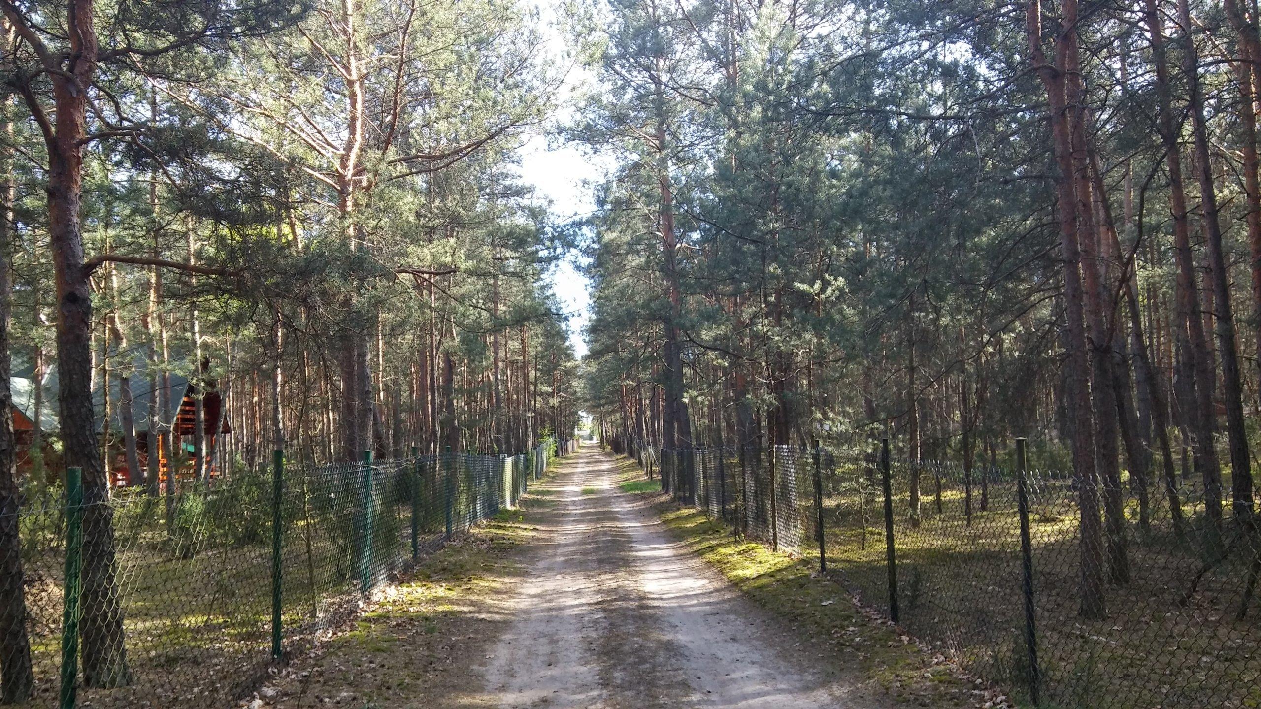 Działka leśna z mediami z możliwością budowy domu