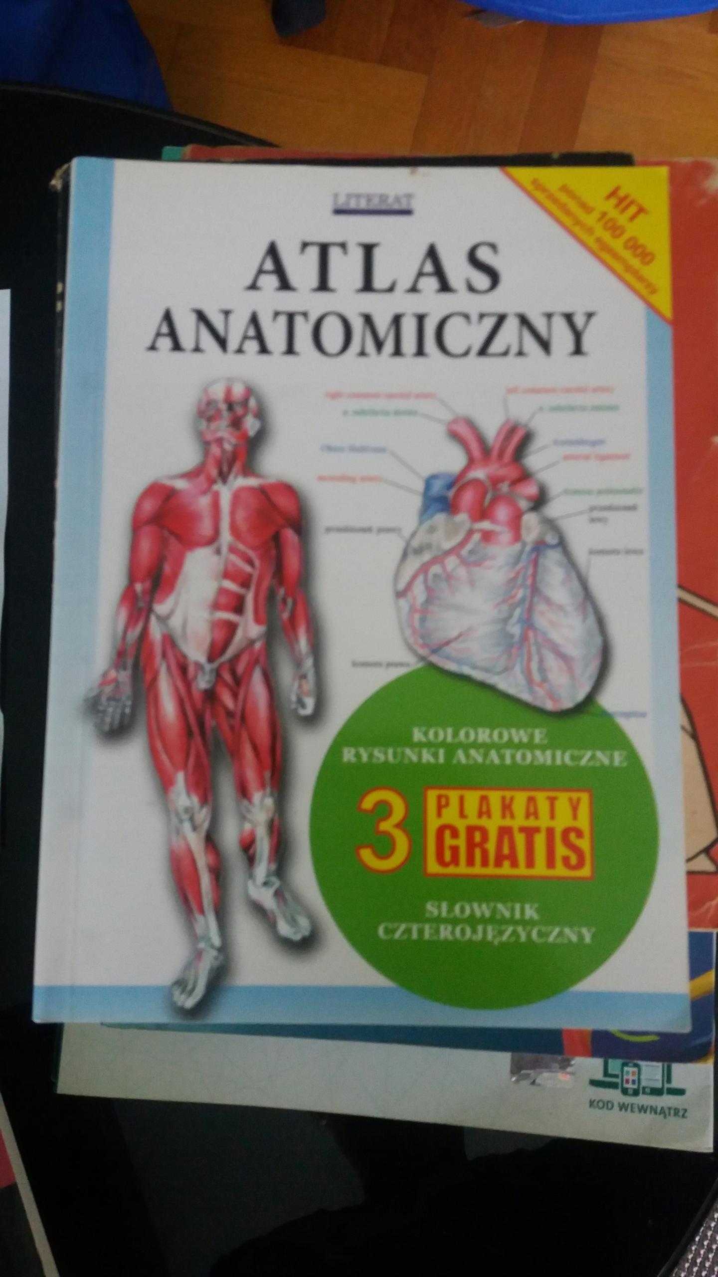 Atlas Anatomiczny 7677437366 Oficjalne Archiwum Allegro