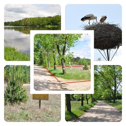 Działka nad rzeką  - gmina Rzewnie, Orłowo