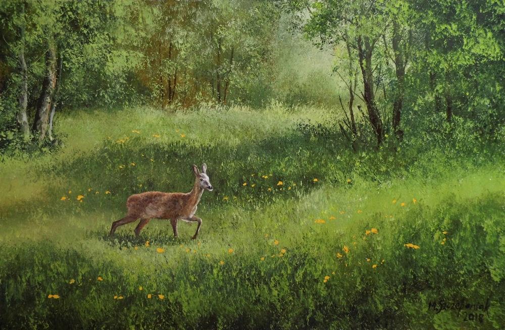M.Szczepaniak `Sarna na leśnej łące` 60x40cm