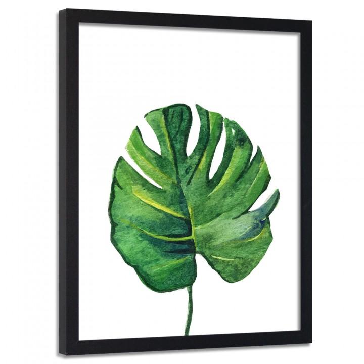 Plakaty Botaniczne Na ścianę 40x50 Plakat W Ramie