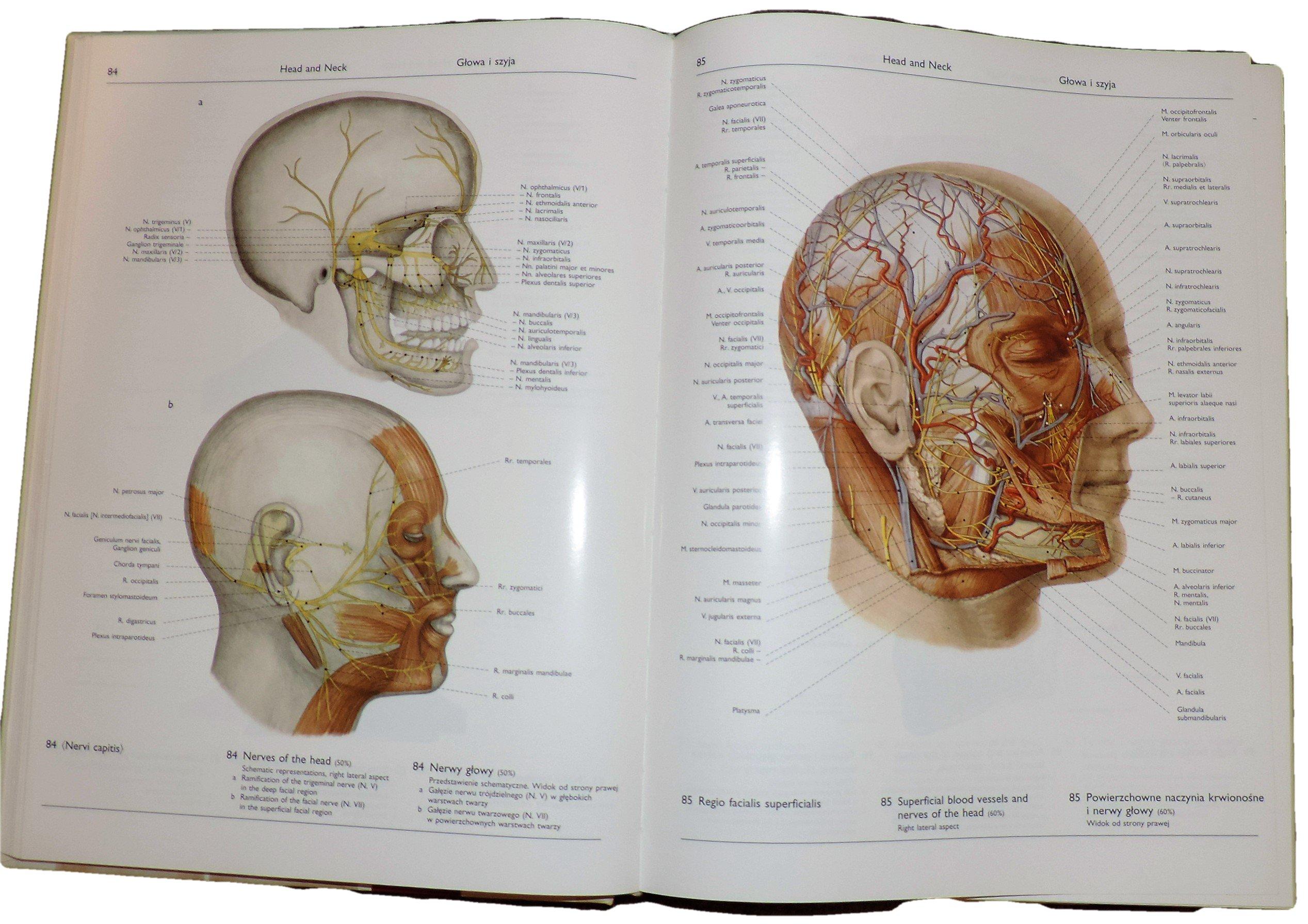 Atlas Anatomii Czlowieka Tom 1 2 I Indeksy 7140170294 Oficjalne