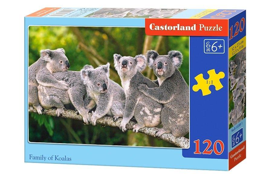 CASTOR 120 ELEMENTÓW Rodzina Koali