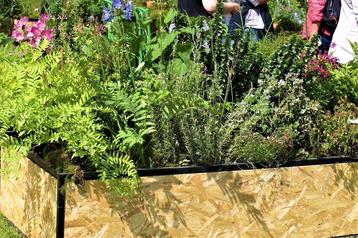 záhrada v kontajneri 3