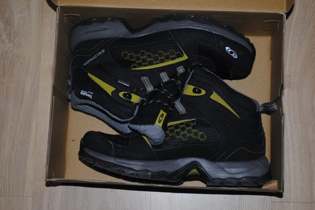 Męskie buty Salomon MADAWASKA TS GTX