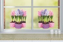 ein Aufkleber auf dem Fenster das Fensterglas Blumen Blumen HYAZINTHEN