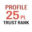 POZYCJONOWANIE SEO - Linki Trust Rank 25 x TF40 PL