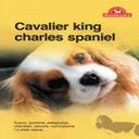 Książka Cavalier king charles spaniel Galaktyka