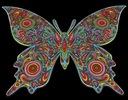 ColorVelvet Kolorowanka welwetowa 47x35cm Motyl