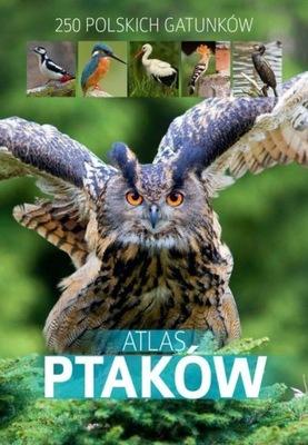 Atlas ptaków Marchowski Dominik SBM