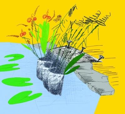 Карман ?????????? ??? посадки водных растений