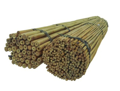 BAMBUSOVÉ TYČE 180 cm 16/18 mm /100ks, bambus
