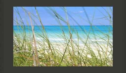 Fototapeta - morze plaża trawy 450X270cm