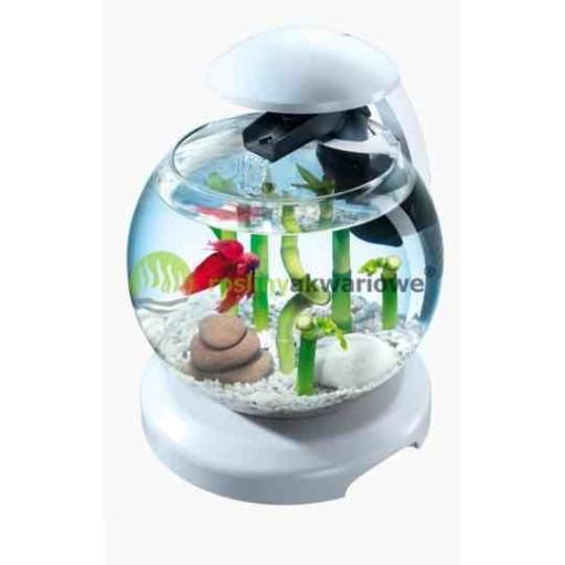 Tetra Cascade Globe 6 8l Kula White Edition 6890823509 Allegro Pl