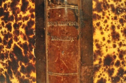 1875 ENCYKLOPEDJA KOŚCIELNA NOWODWORSKI TOM 9 /419