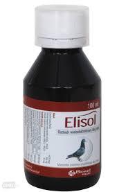 Biowet Elisol Witaminy Dla Golebi 100 Ml 7136405537 Allegro Pl