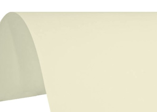 Papier wizytówkowy gładki ecru OLIN 150g 50A4